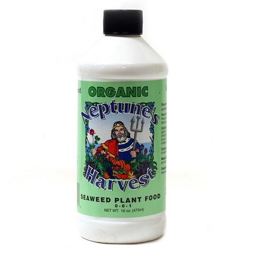 Neptune harvest seaweed fertilizer for Harvest organic soil