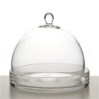 Large Cloche Terrarium