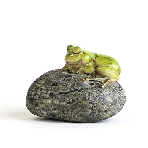 Sleeping Frog On Stone