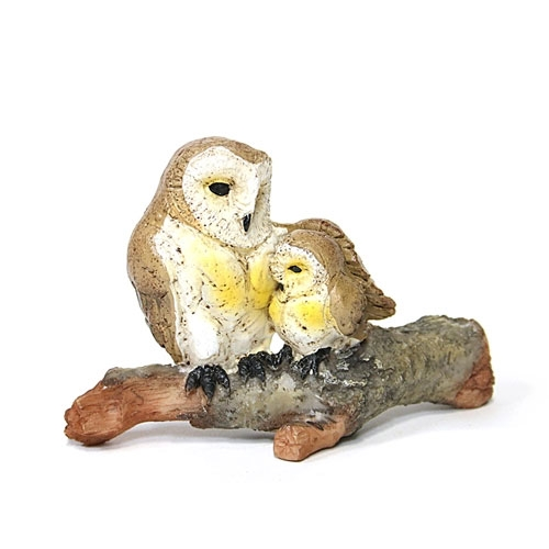 Barn Owl with Owlet