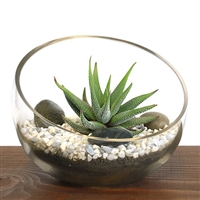 Small Bowl Zen Aloe Terrarium Kit