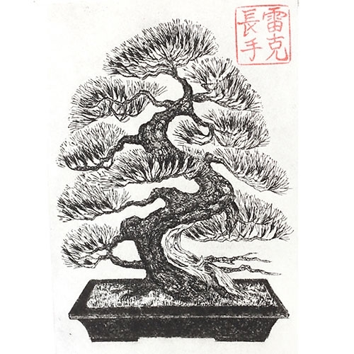 how to draw a bonsai tree step by step