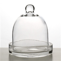 Small Cloche Terrarium Vase