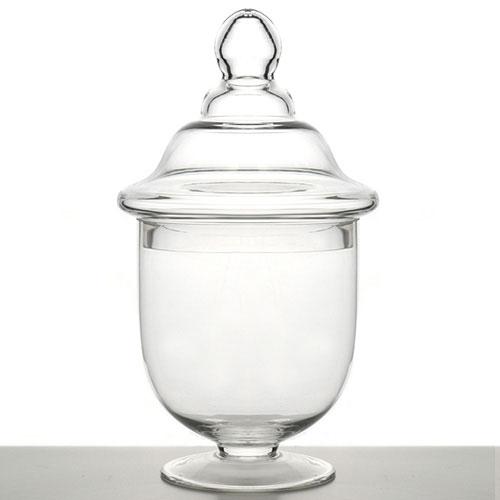 Large Apothecary Jar Terrarium