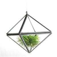 Zinc Diamond Terrarium Small