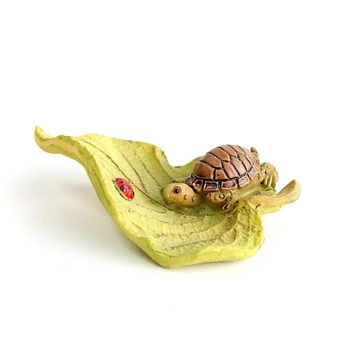 Little Turtle on Leaf
