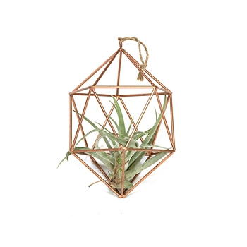 Geometric Wire Air Plant Ornament