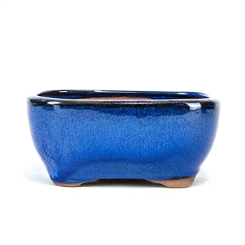 "6.5"" Blue Tall Rounded Rectangle Pot"