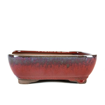 "8.5"" Red Rounded Rectangle Pot"