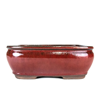 "10"" Red Rectangle Pot"