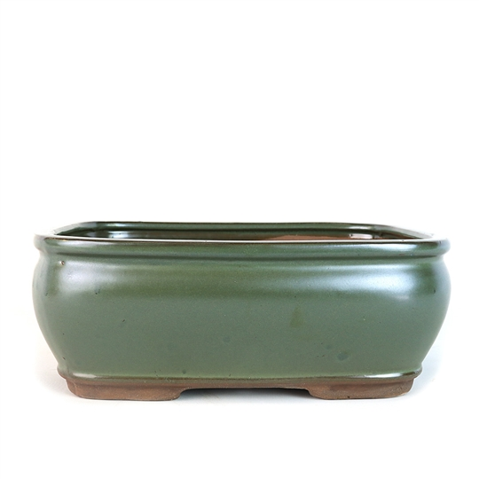 "10"" Dark Teal Rectangle Pot"