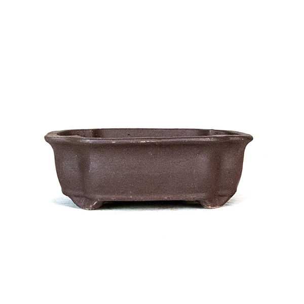 "6.25"" Unglazed Lotus Style Pot"