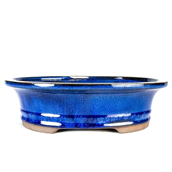 "10.5"" Blue Flared Oval Pot"