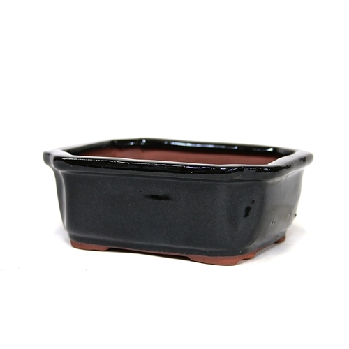 "5"" Black Rectangle Pot"