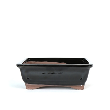 "6.5"" Black Traditional Rectangle Pot"