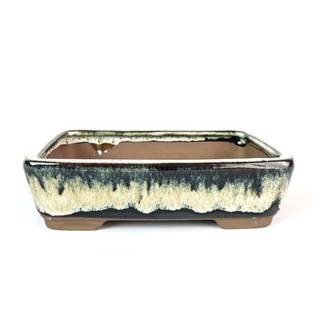 "8"" Midnight Ombre Tapered Rectangle Pot"