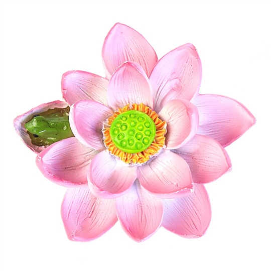 Pink Lotus Flower with Tiny Frog