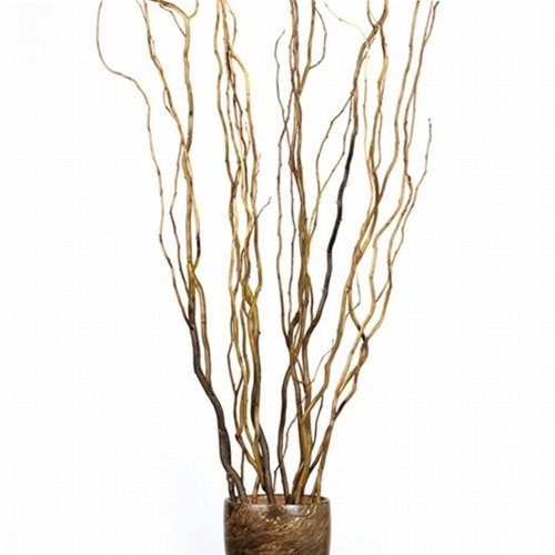 Botanicals Curly Willow