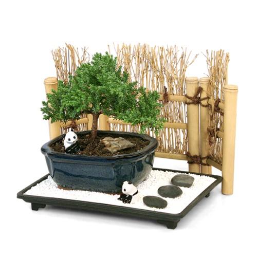 Premium Zen Landscape Gift Set from