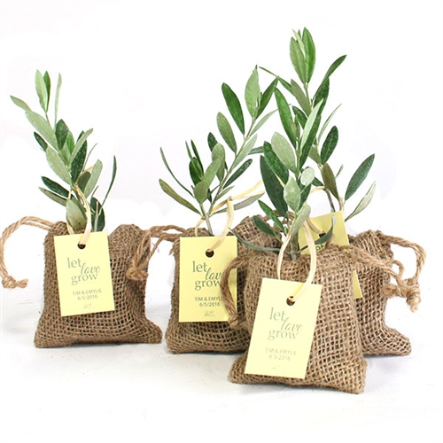 Olive Tree Plant Favor Burlap Pouch