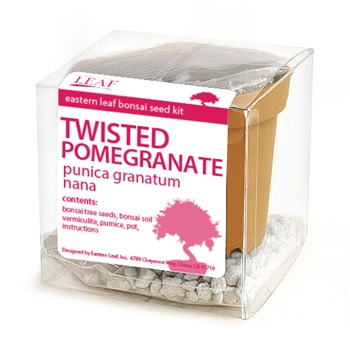 Twisted Pomegranate Bonsai Seed Kit