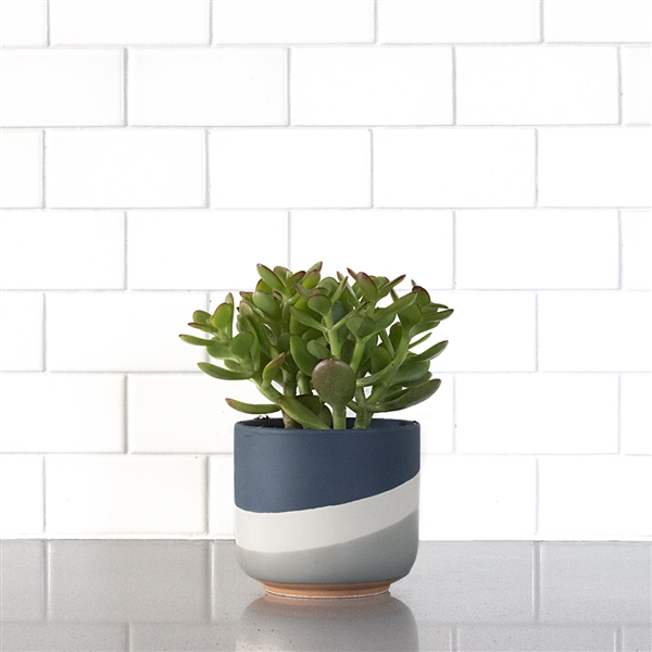 Tri-tone Blue Grey Ceramic Planter
