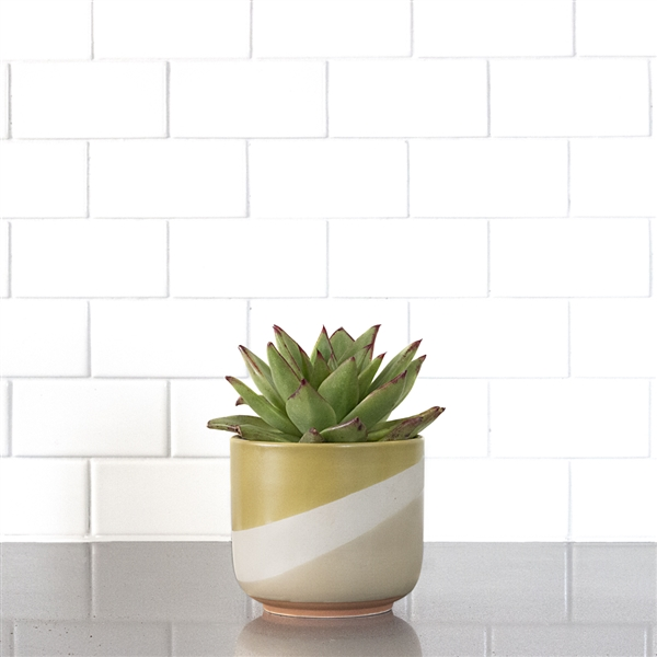 Tri-Tone Yellow Grey Ceramic Planter