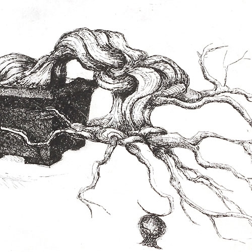 bonsai print drawing t