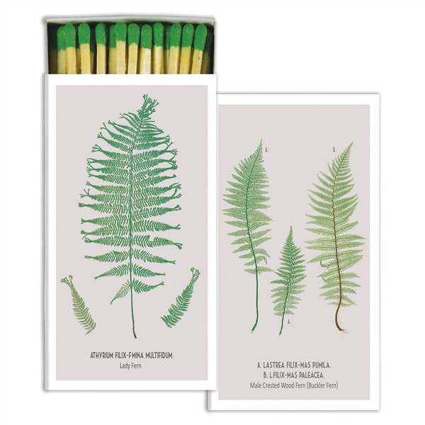 Large Matchbox - Ferns